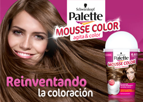20 lotes de la nueva coloración Palette Mousse Color