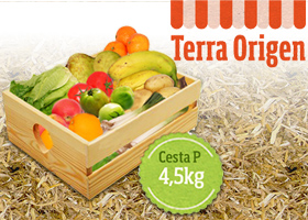 Regalamos 10 Cestas de Fruta y Verdura