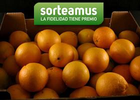 Llévate 5 kg de naranjas de máxima calidad