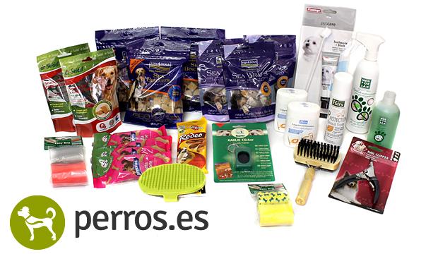 Sorteo Gana Un Pack De Productos Para Perros Sorteamus